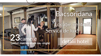 Hotel Bacsoridana